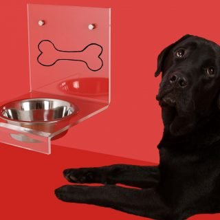 Healthy Labrador Diet - 5 Tips For The Perfect Diet