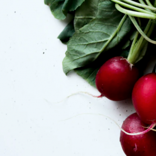 Can Dogs Eat Radishes?