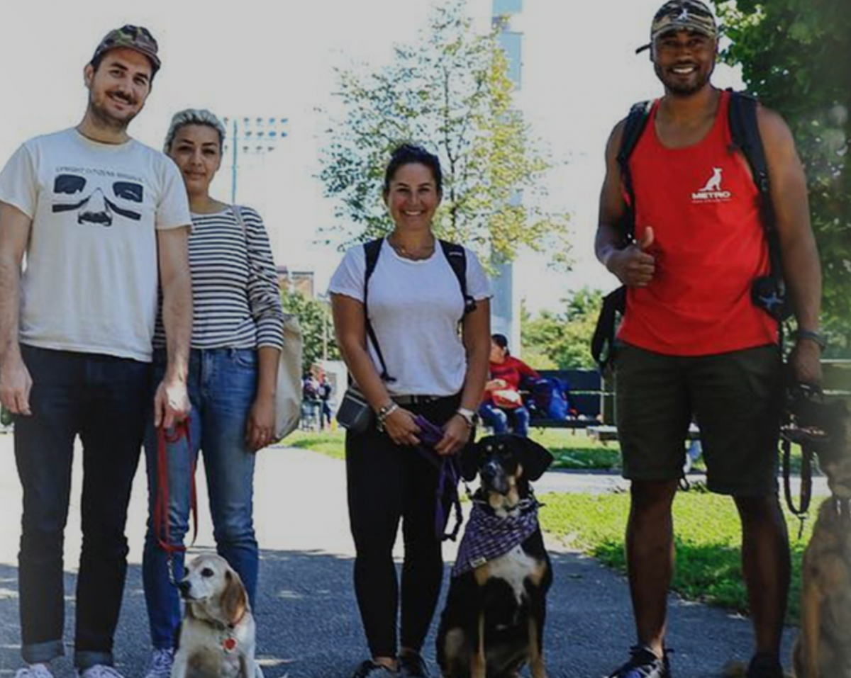 Dog Trainers In New York